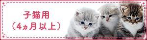子猫用(4ヵ月以上)