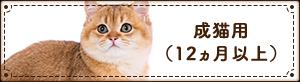 成猫用(12ヵ月以上)